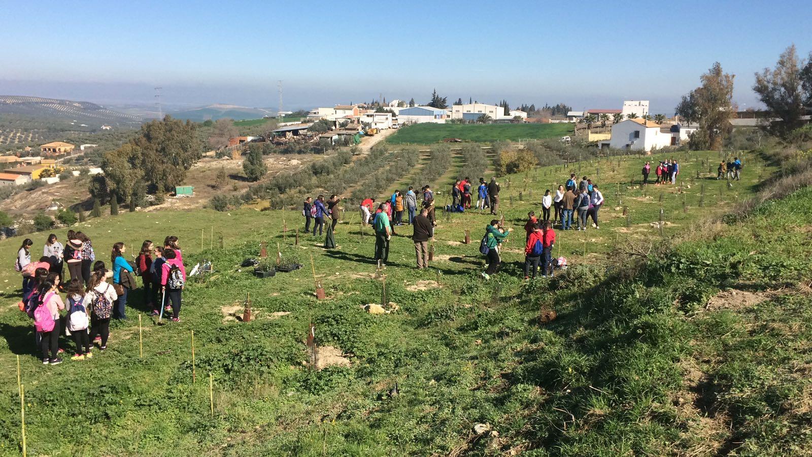 Nuestros alumnos participan en la replantación del parque La Rejoya