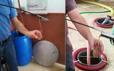 """Procesado de la vendimia de cepas en espaldera finca """"El Montesillo"""""""