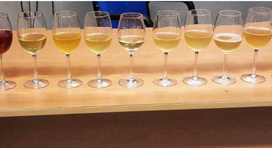 Identificación de variedades de vino