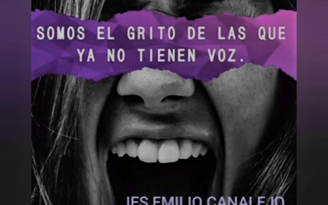 25 N Día Internacional de la Eliminación de la Violencia de Género